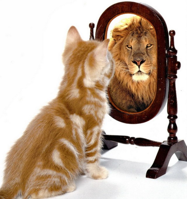 MEDICINA ONLINE fiducia in se stessi ed aumentare la propria autostima.