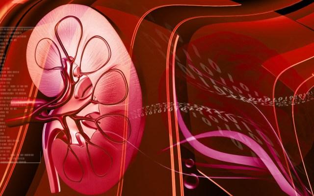Dott. Loiacono Emilio Alessio Medicina Chirurgia Estetica Benessere Dietologia Sessuologia Ecografie Tabagismo Smettere di fumare Combattere l'ipertensione farmaci non funzionano tecnica della denervazione renale