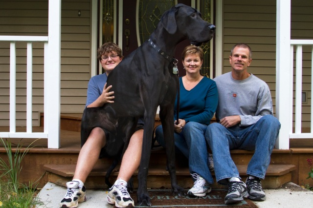 Tallest Dog   MIKAL103