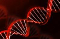 DNA LABORATORIO SCIENZA