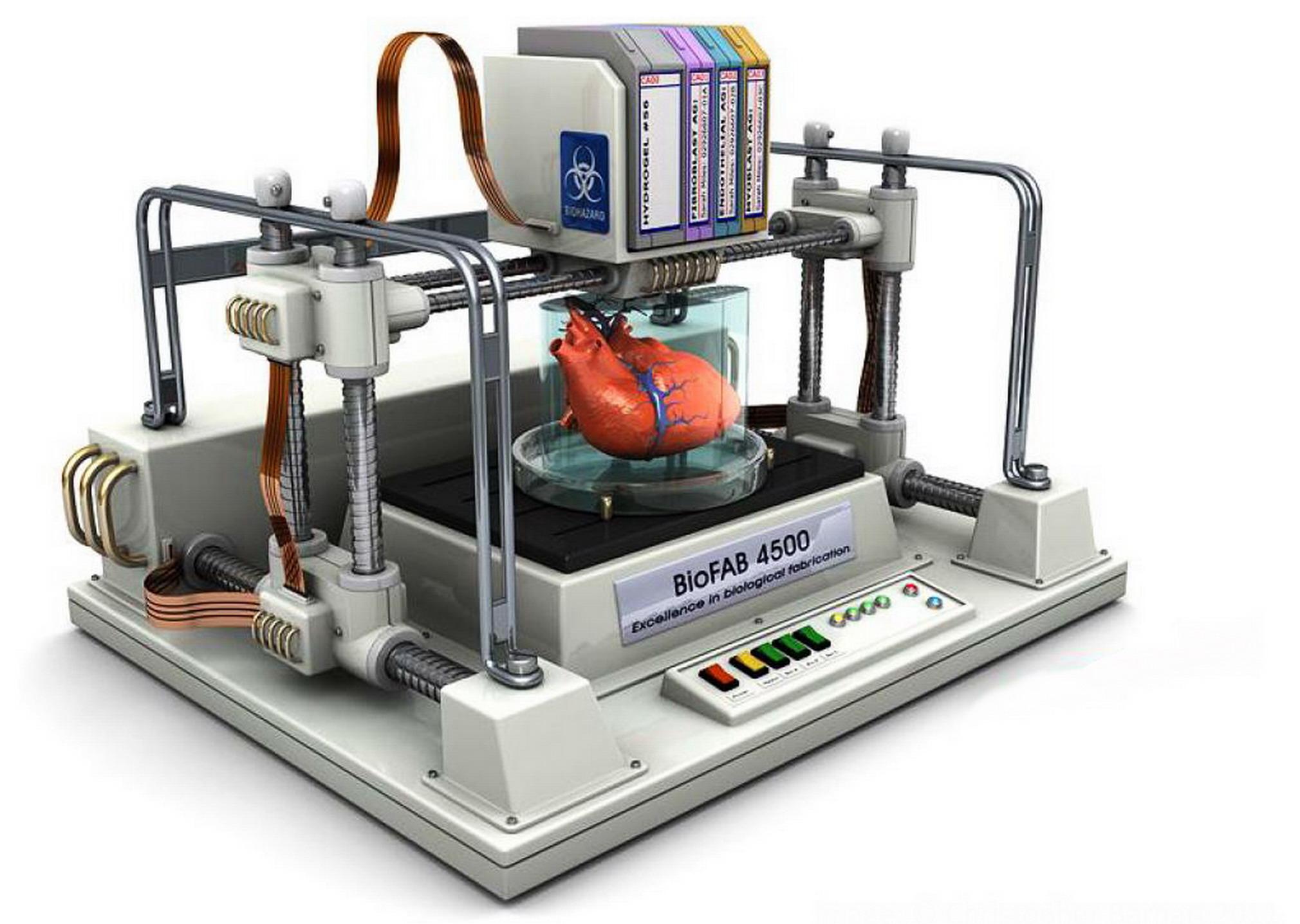 Costruisci i tuoi organi con la stampante 3d medicina online for Costruisci i tuoi piccoli piani di casa