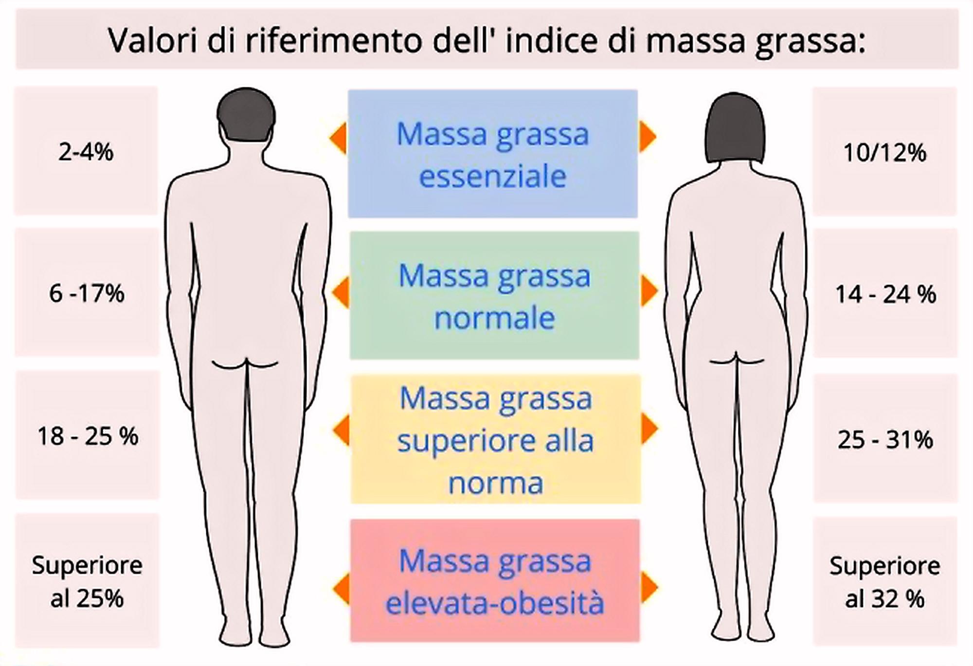 percentuale massa grassa ideale uomo