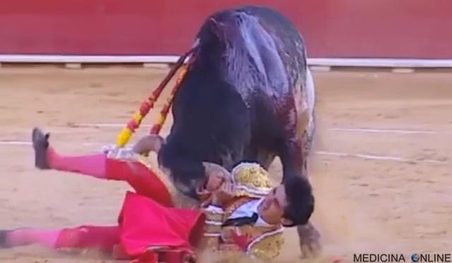 MEDICINA ONLINE Il toro Lorenzo uccide il torero durante la corrida basta con questo spettacolo indegno VIDEO.jpg
