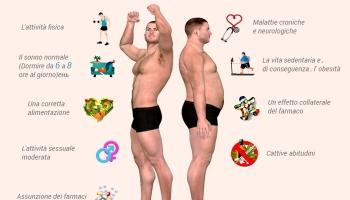 Erezione maschile, come funziona e come prolungarla
