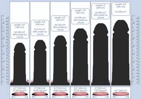 Risultati immagini per lunghezza del pene