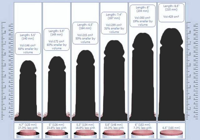 dimensioni del pene piccole grandi