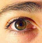 occhi marroni che diventano verdi