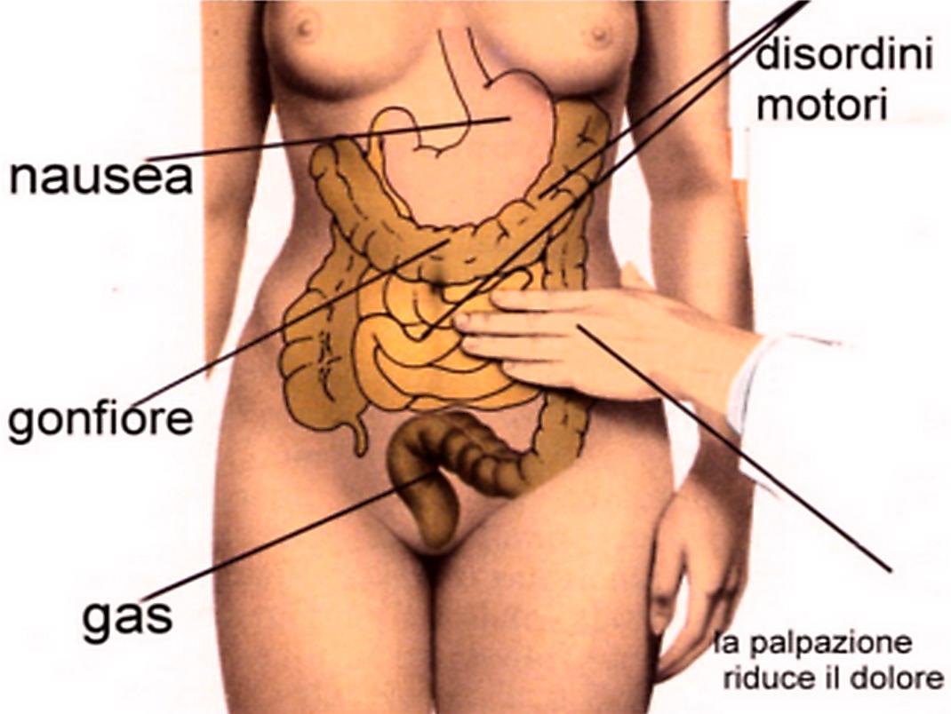 la dissinergia anorettale può causare disfunzione erettile