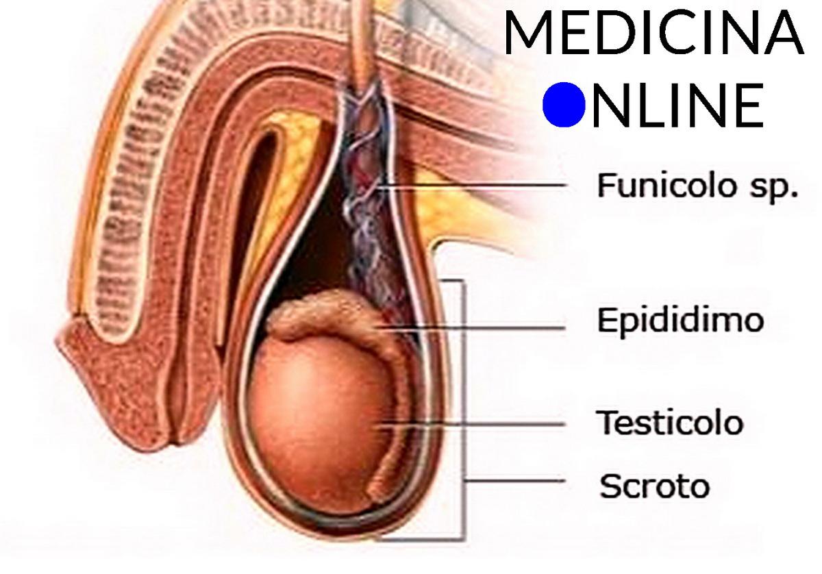 impotenza del neoplasia ai testicoli