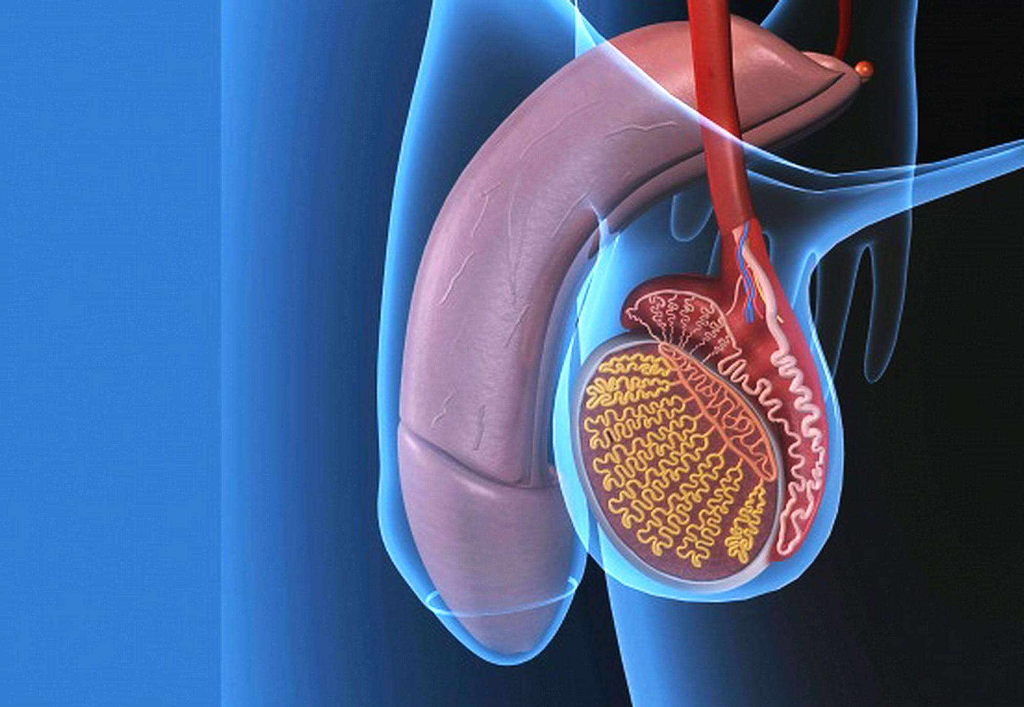 quanto gonfia dovrebbe essere la prostata in imbarazzo dopo lintervento chirurgico