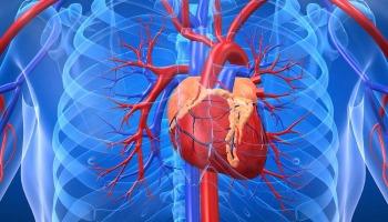 Analisi del CPK e CK nel sangue: valore alto, basso e normale