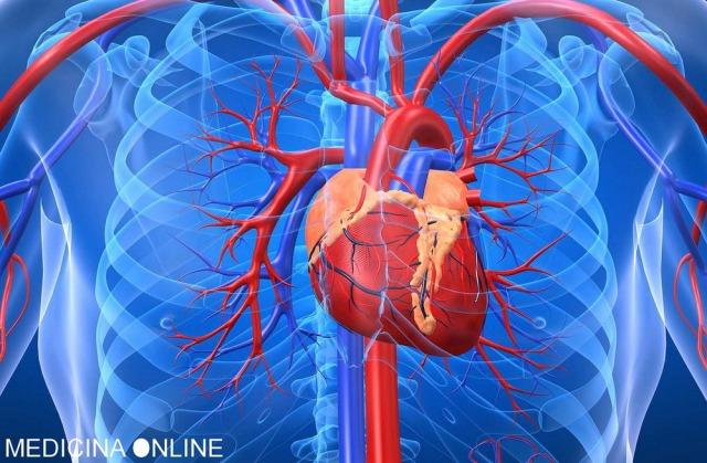 MEDICINA ONLINE CUORE HEART INFARTO MIOCARDIO NECROSI ATRIO VENTRICOLO AORTA VALVOLA POMPA SANGUE ANGINA PECTORIS STABILE INSTABILE ECG SFORZO CIRCOLAZIONE