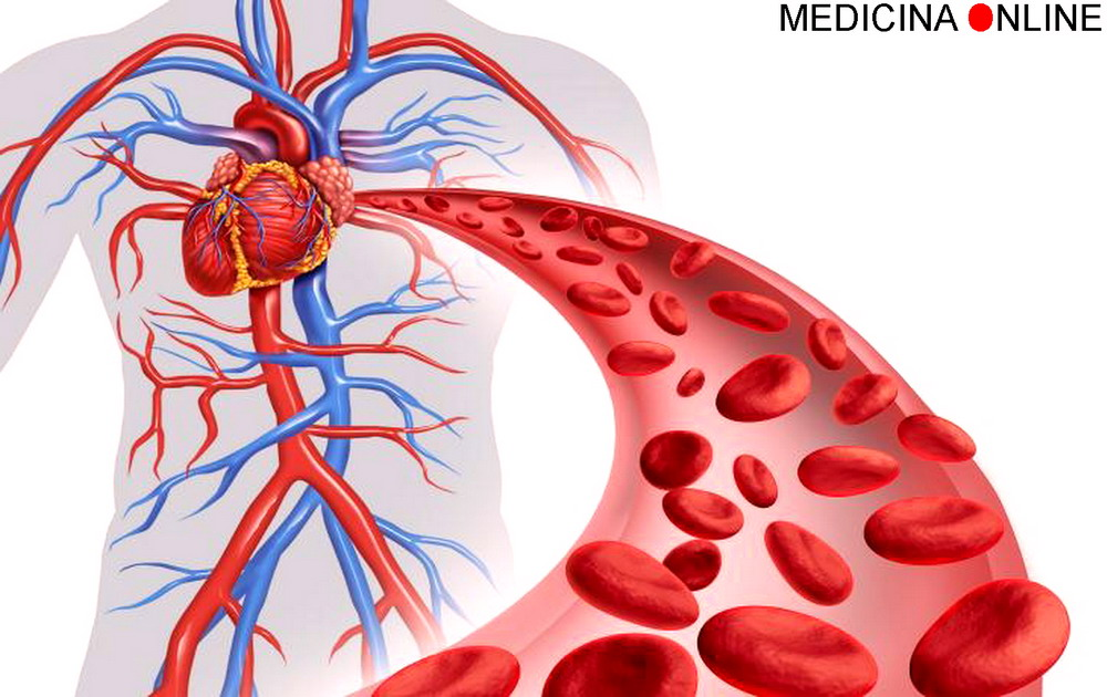MEDICINA ONLINE GLICEMIA INSULINA SANGUE DIFFERENZA CONCENTRAZIONE ORMONE PIASTRINE GLOBULI ROSSI BIANCHI GLUCAGONE TESTOSTERONE ESTROGENI PROGESTERONE CUORE.