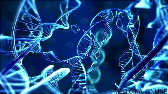 MEDICINA ONLINE INVASIVITA VIRUS BATTERI FUNGHI PATOGENI MICROBIOLOGIA MICROORGANISMI DNA RNA GENI CROMOSOMI LABORATORIO ANALISI PARETE INFEZIONE ORGANISMO PATOGENESI MICROBIOLOGY WALLPAPER.jpg