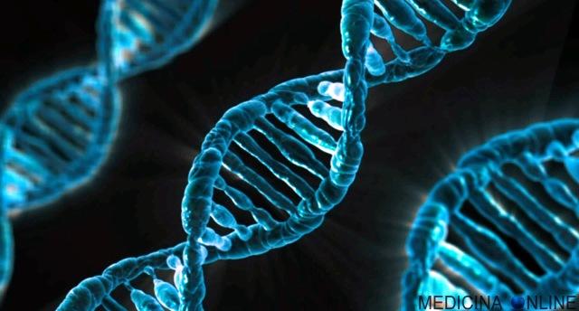 MEDICINA ONLINE INVASIVITA VIRUS BATTERI FUNGHI PATOGENI MICROBIOLOGIA MICROORGANISMI DNA RNA GENI CROMOSOMI LABORATORIO ANALISI PARETE INFEZIONE ORGANISMO PATOGENESI MICROBIOLOGY WALLPAPER