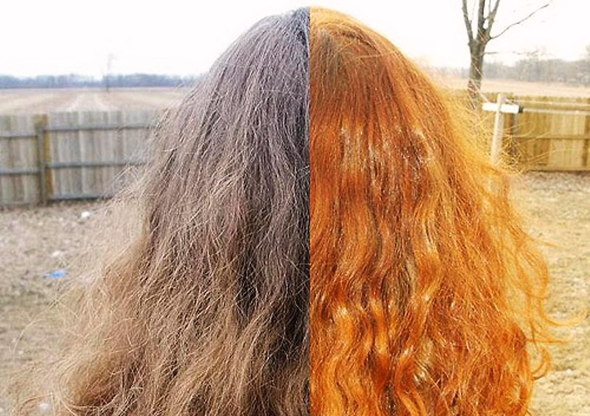 Fabuleux Perché non riesco a coprire i capelli bianchi con l'henné? Ecco  FM84