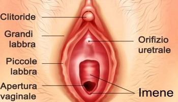 come prolungare lerezione sessuale negli uomini quanto dura lerezione