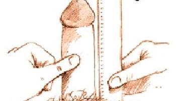 come misurare correttamente la lunghezza del pene