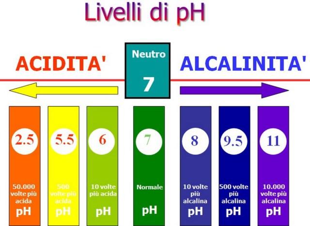 MEDICINA ONLINE DIFFERENZA ACIDI BASI CHIMICA BIOCHIMICA APPUNTI SCUOLA UNIVERSITA SOSTANZA PH ACIDITA BASICITA.jpg
