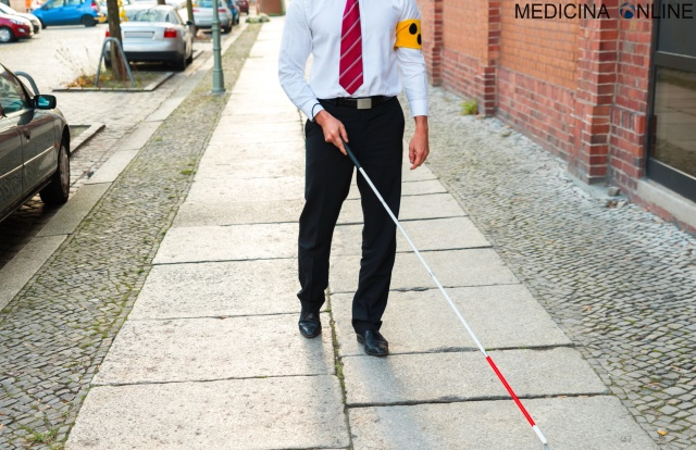 MEDICINA ONLINE CECITA CIECO OCCHI VISTA PERDERE IPOVEDENTE CANE BLIND BLINDESS BASTONE CAMMINARE DISABILE DISABILITA SUPPORTO AIUTO RETINA CATARATTA GIORNATA MONDIALE