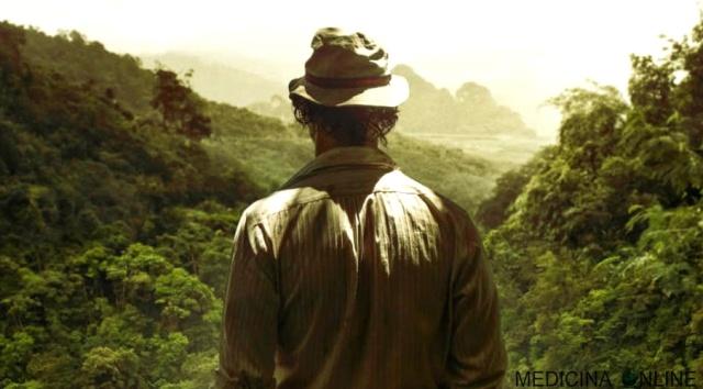 MEDICINA ONLINE Kenny Wells Matthew McConaughey protagonista di Gold - La grande truffa film 2016 diretto da Stephen Gaghan FRASI AFORISMI CITAZIONI FORESTA NATURA ORO GIUNGLA