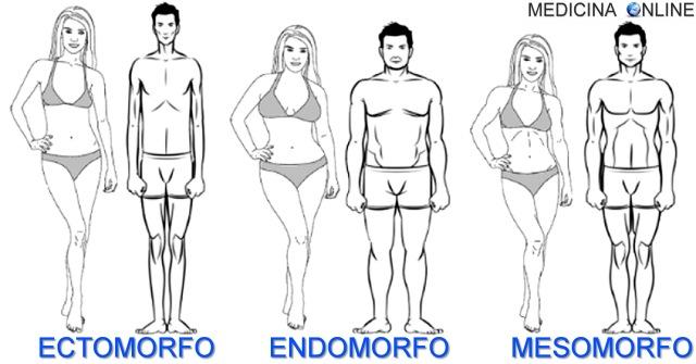 MEDICINA ONLINE ECTOMORFO MESOMORFO ENDOMORFO ALTEZZA GIRO VITA MUSCOLI PALESTRA BODYBUILDING ATLETI ESEMPI CARATTERISTICHE SOMATOTIPO GENETICA FORMA SPALLE GRASSO PESI TEST DIETA ESEMPIO.jpg