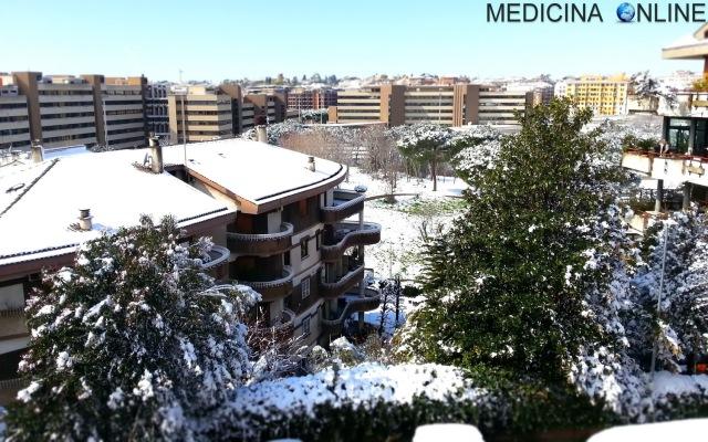 ef50dbcff9b3 MEDICINA ONLINE NEVE SNOW GHIACCIO ICE CLORURO DI SODIO SCIOGLIE SALE DA  CUCINA GROSSO FINO CLORURO
