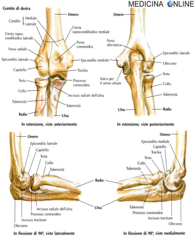 Medicina per alleviare il dolore alle articolazioni. Artrite e artrosi: 5 rimedi naturali