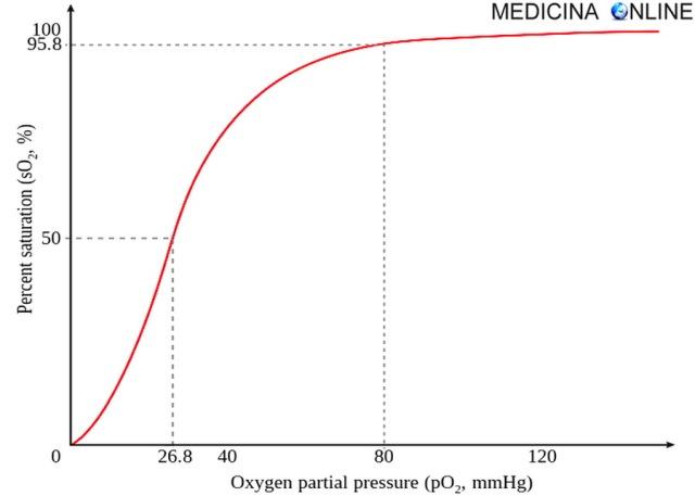 MEDICINA ONLINE CURVA DI SATURAZIONE DELL'EMOGLOBINA SATURAZIONE EMOGLOBINICA ARTERIOSA SANGUE SATURIMETRI MIGLIORE Hemoglobin saturation curve.jpg