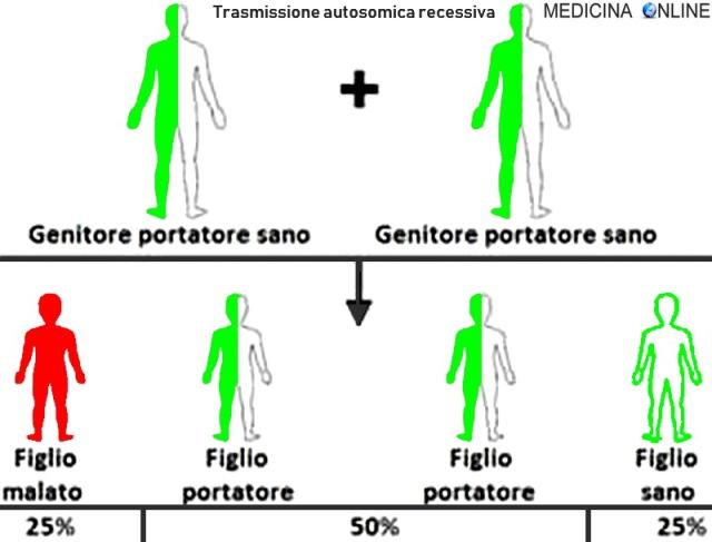 MEDICINA ONLINE GENETICA TRASMISSIONE AUTOSOMICA DOMINANTE RECESSIVA GENI CROMOSOMI ALLELE MALATO PADRE FIGLI PERCENTUALI TRASMESSO MALATTIA GENICA MADRE GENITORE XX XY.jpg