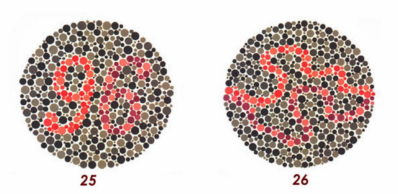Medicina online tavole di ishihara test daltonismo tavole - Tavole di ishihara test ...