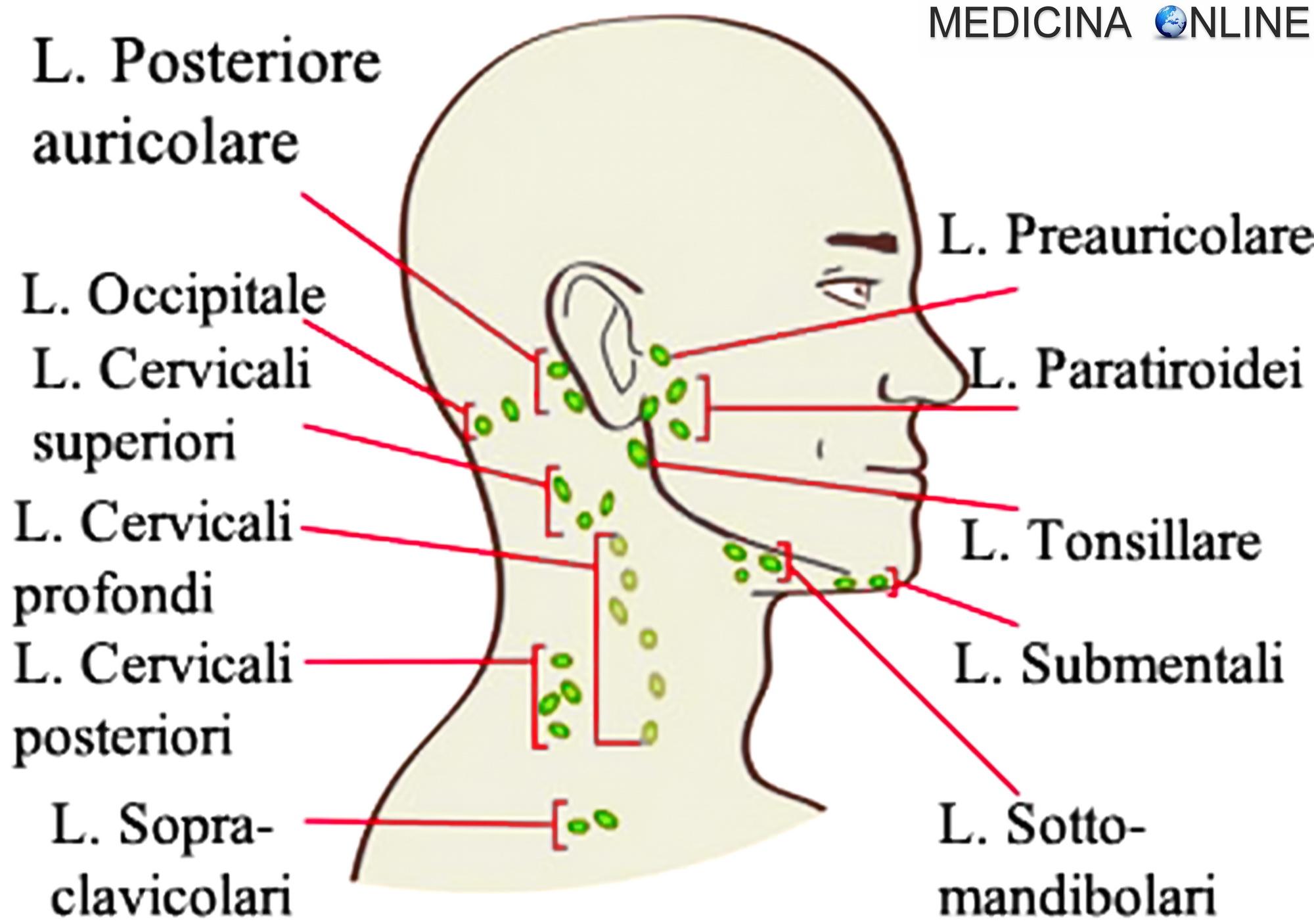intervento prostata e linfonodi
