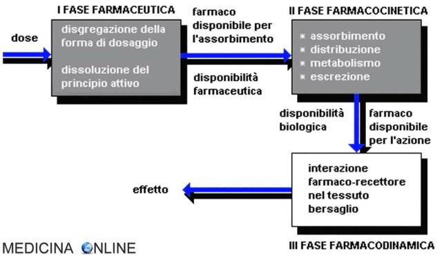 MEDICINA ONLINE Farmacocinetica Farmacodinamica interazioni farmaco-recettore relazione dose-risposta FARMACI.jpg