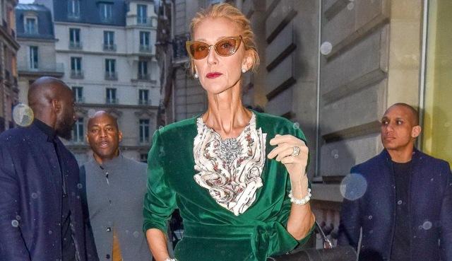 MEDICINA ONLINE Celine Dion è troppo magra soffre di anoressia Lei risponde Lasciatemi in pace.jpg