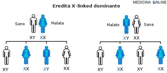 MEDICINA ONLINE Ereditarietà X linked DOMINANTE malattie legate al cromosoma X significato esempi.jpg
