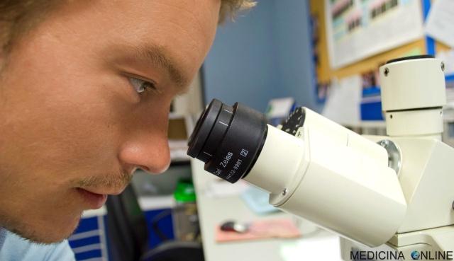 MEDICINA ONLINE LABORATORIO MICROSCOPIO VIRUS BATTERIO FUNGO INFEZIONE ANALISI SANGUE VALORI REFERTO BIOPSIA PATOLOGO LINFONODO SENTINELLA CHIMICA BIOLOGIA MEDICI FARMACI COLESTEROLO ANTIBIOTICI RICERCA SCIENZA SPERMA DNA.jpg