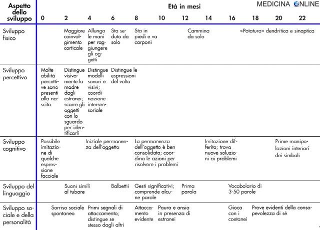 MEDICINA ONLINE Processi dello sviluppo della prima infanzia due anni di vita bambino neonato lattante maturazione fisica esplorazione attaccamento.jpg