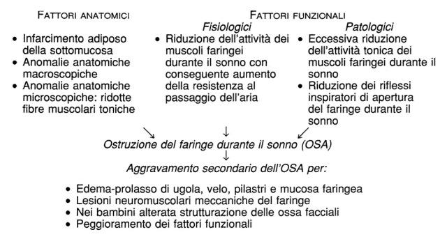 MEDICINA ONLINE Fattori primitivi e secondari favorenti l'OSA.jpg