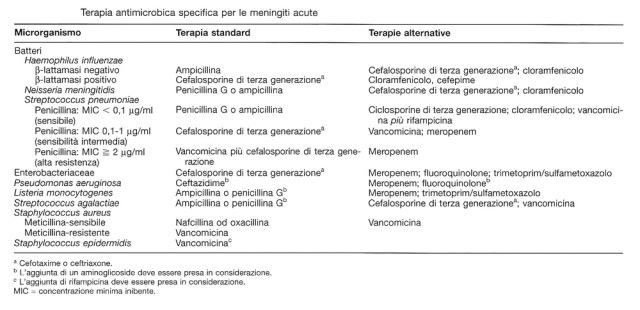 MEDICINA ONLINE TERAPIA ANTIBIOTICA SPECIFICA PER MENINGITE ACUTA.jpg