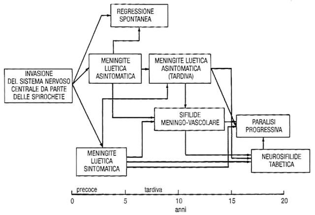 MEDICINA ONLINE Evoluzione della neurosifilide in adulto immunocompetente